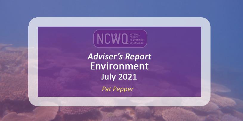 NCWQ Environment Report July 2021